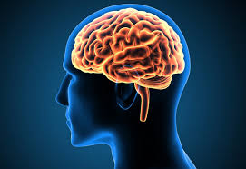 Trik Sederhana Membuat Otak Tetap Awet Muda