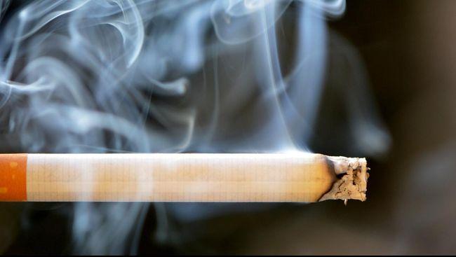 Apakah Benar Asap Rokok Dapat Mmebunuh Virus Corona?